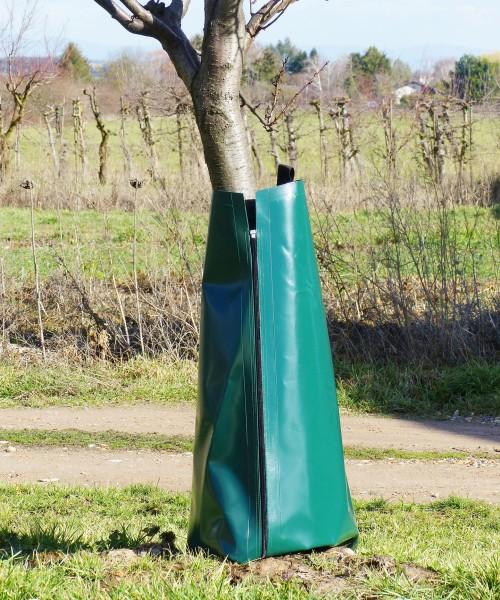 Ein Baum mit einem Premium Bewässerungssack und Baumsack für eine effiziente und nachhaltige Bewässerung von Bäumen und Sträuchern